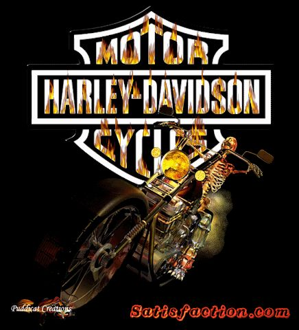 have a sexy tuesdaY night gif | All Graphics » harley davidson jack dannels"|436|480|?|en|2|96798b2e9b878958526175583942836e|False|UNLIKELY|0.2973555326461792