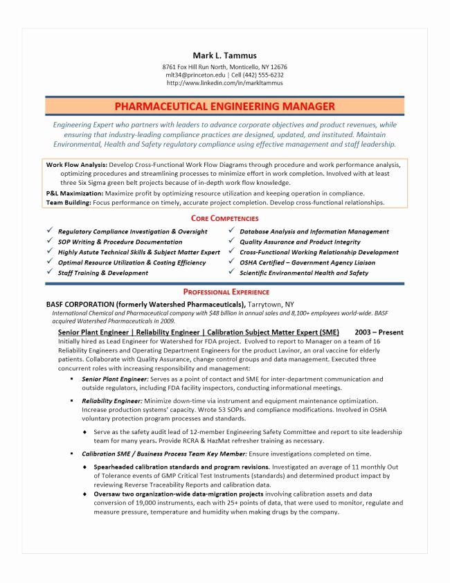 Director Of Engineering Resume Awesome Executive Resume Samples In