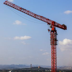 """Everest Engineering shows new tower cranes  Sharing details of the major order, claimed to be one of the highest in the Indian tower cranes industry, Mr. P.V. Ramdev, MD, Everest Engineering says, """"The major order is the second one from BG Shirke followed by 86 units of flat top tower cranes required in the first phase of DDA's housing construction. This constituted 74 GJJ tower cranes and 12 numbers of Top sky units of six tons capacities."""" Read more here: http://ow.ly/YDDJ30bfr55"""
