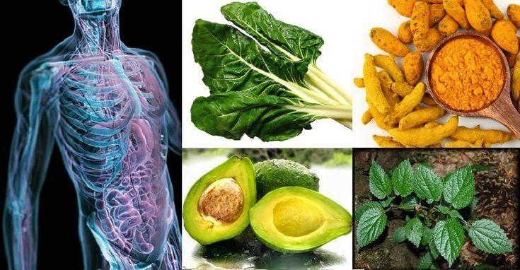 6 Tejidos que pueden ser regenerados a través de la nutrición - Vida Lúcida