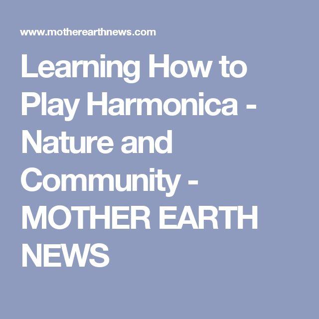 Best Way To Learn To Play Harmonica - WebKajian