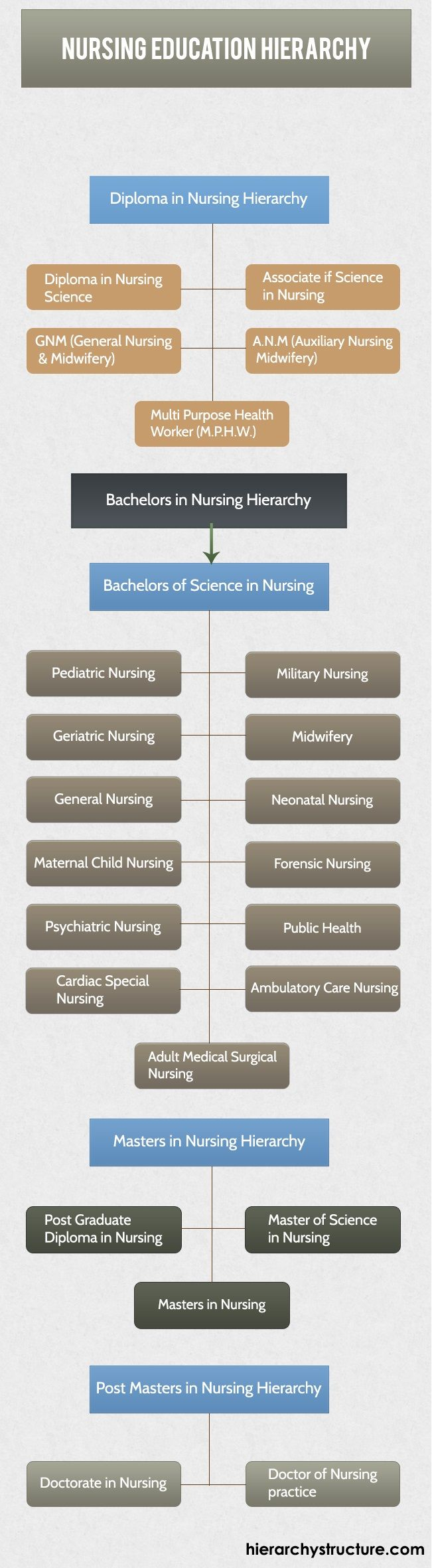 1000 images about education hierarchy nyc nursing education hierarchy