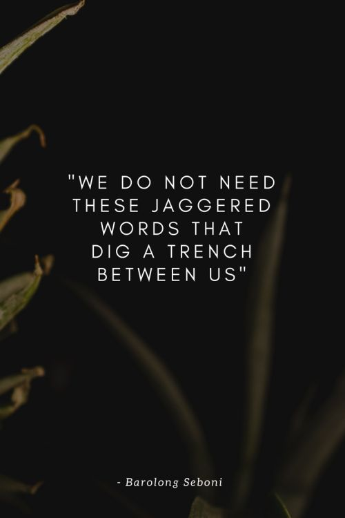 Poem by Barolong Seboni - We do not need these jaggered words that dig a trench between us
