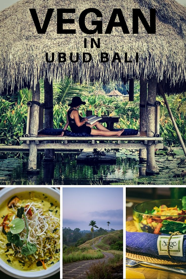 Vegan Food in Ubud Bali: It's quite possible that I shed a tear while looking at the restaurant selection in Ubud, Bali. For once in my life, vegan options were the norm. Narrowing this list down to five wasn't easy and I urge you to go way beyond the glorious establishments I've gathered below. However, these guys will make your heart and stomach swell with joy and non-dairy comfort fats.
