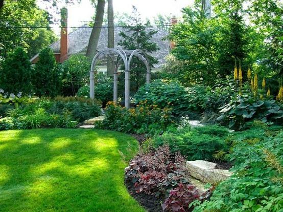 17 best images about backyard privacy landscape on pinterest