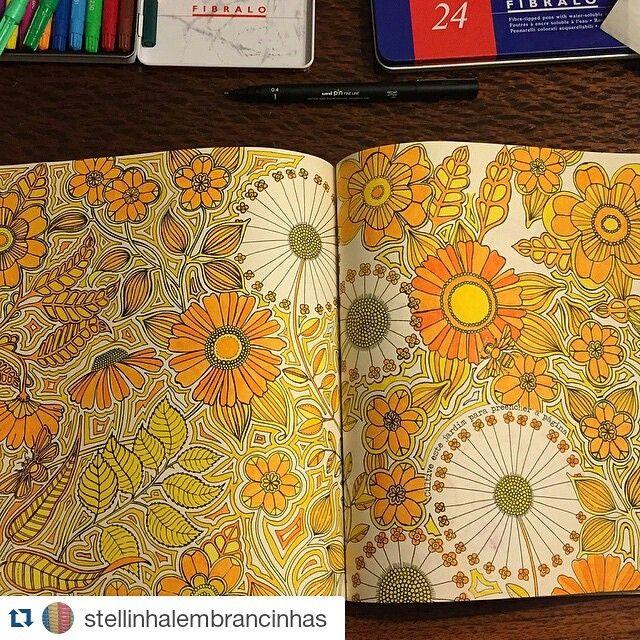 Repost Stellinhalembrancinhas Coloured PencilsSecret GardensColoring BooksJohanna
