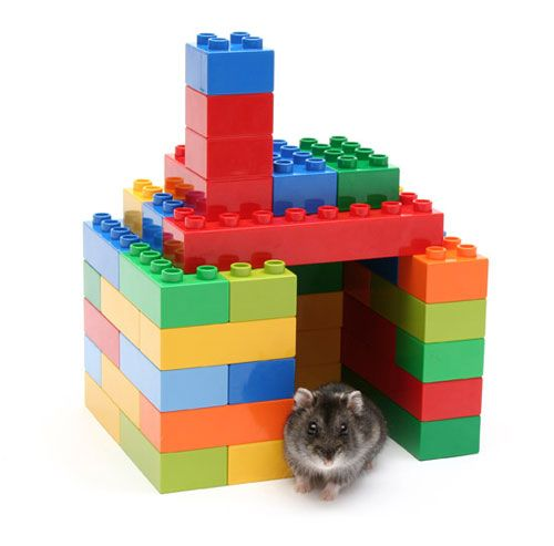 hamster lego house, also works for mice and such.