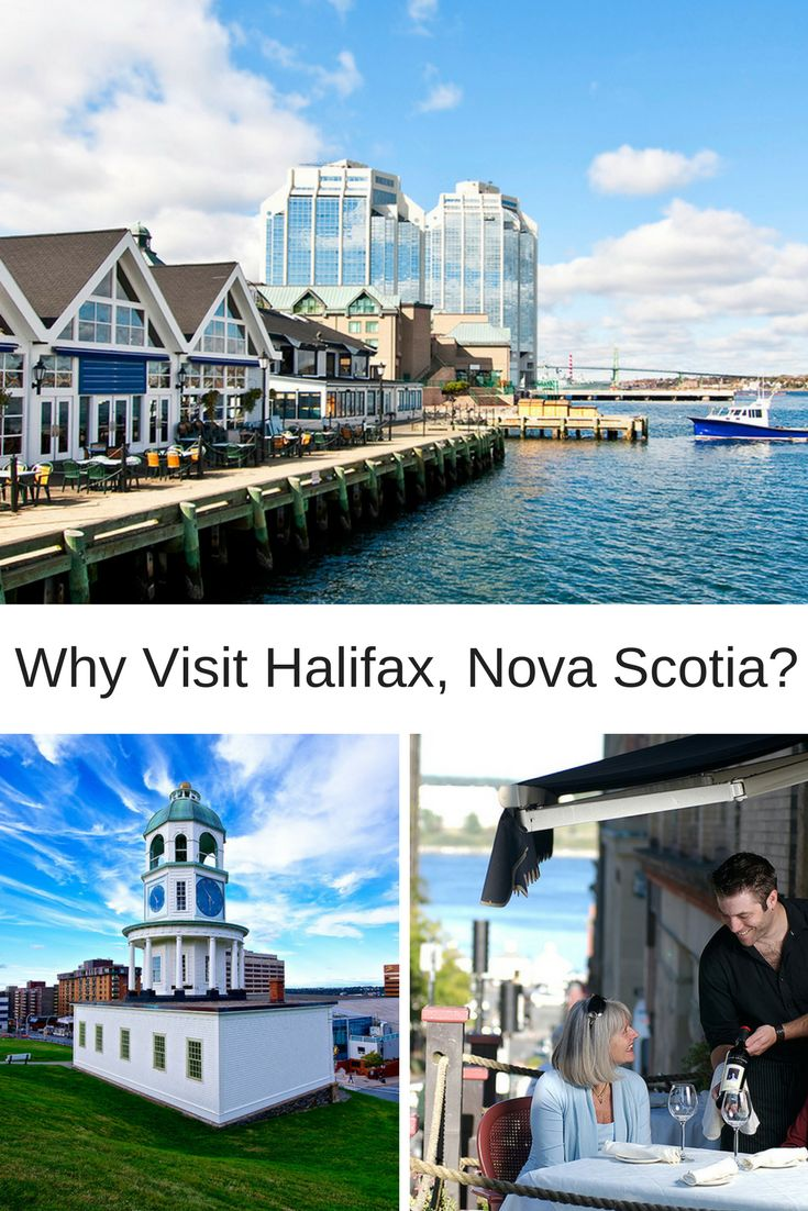 Find out with Bay Ferries!  #Halifax #NovaScotia #VisitHalifax #VisitNovaScotia