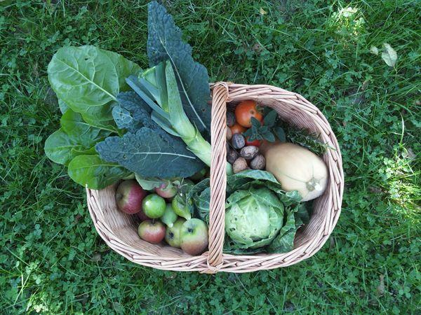 cesto di frutta e verdura autunnale