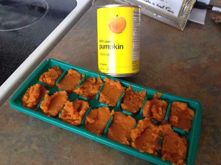 Give a dog pumpkin for an upset stomach. Great, but heres what to do with the rest of the can. Freeze them in ice cube trays. This way you always have some on had when you need it, or even give as a treat :).