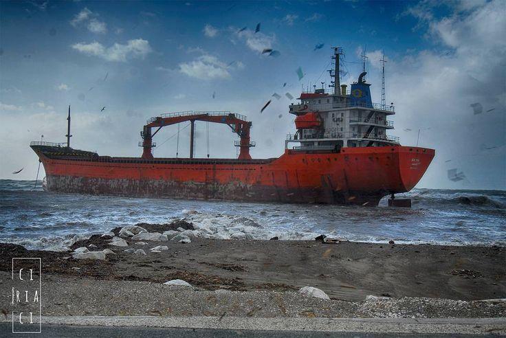 Volava tutto... alghe gabbiano spuma d'onda. Volavo anch'io. Quasi... Terza e ultima prospettiva della nave incagliata alla Rotonda d'Ardenza. Livorno 13 Gennaio 2017  #wind #vento #nave #ship #incidente #accident #mare #sea #livorno #toscana #tuscany #volgolivorno #volgotoscana #volgoitalia #igerslivorno #igerstoscana #igersitalia #tuscanypeople #instalike #instalife #instamoment #fotografia #photography #fotografi_italiani #l4l #like4like #likeforlike