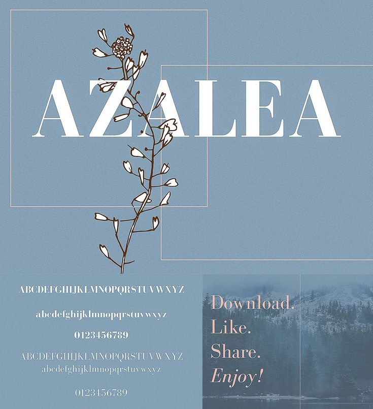 Azalea is a classy serif typeface that looks incredible in every context. Perfect for logos, branding, invitations, and more. Free for download. For personal use. File format: .otf for Photoshop or other software. File size: 1 Mb.
