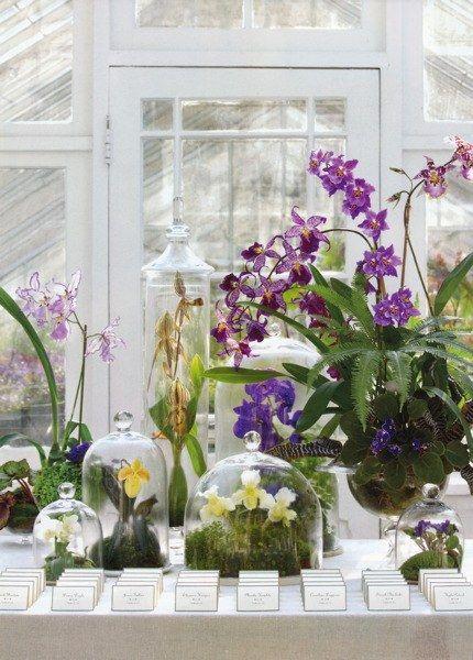 floral arrangements orchids glass bells