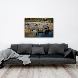 """Découvrez chez COOGEE (www.coogee.io), votre galerie de photo d'art en ligne en édition limitée,   """"Eléphants"""" une photographie de Vincent Vignaux Pilot. Disponible en 30 exemplaires sur divers supports et formats à partir de 25€ sur coogee.io#Photographie #Art #EditionLimitée #coogeegallery #deco #decoration #editionlimitee #photodeco #photographie #art #limitededition """