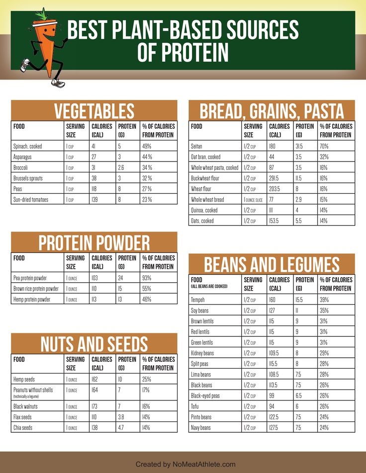 Best Plant-Based Sources of Protein