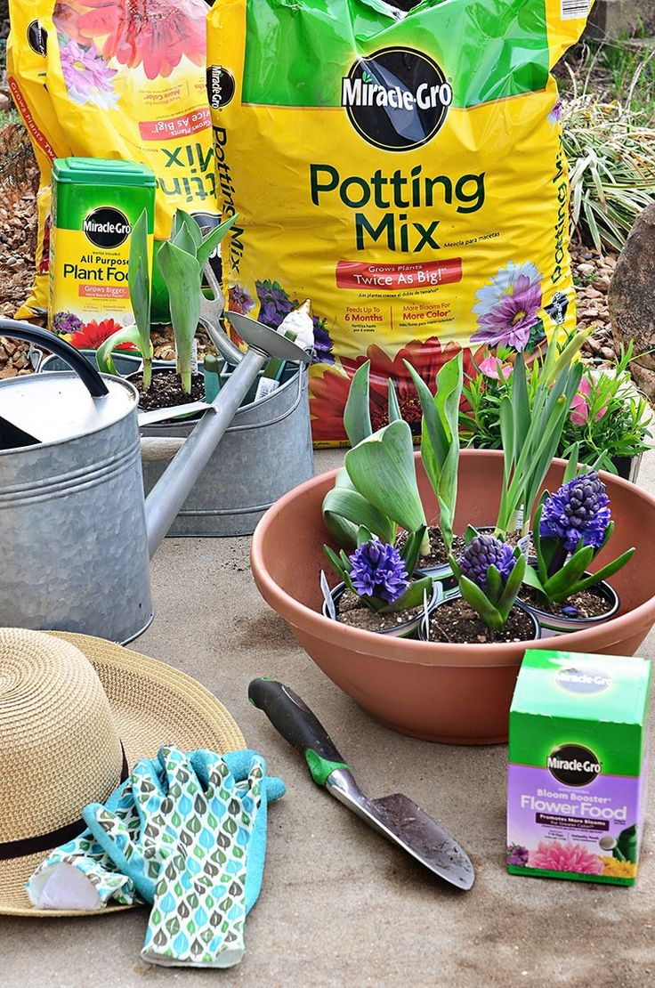 16 Best Images About Gardening On Pinterest Greenhouses Plants And Buckets