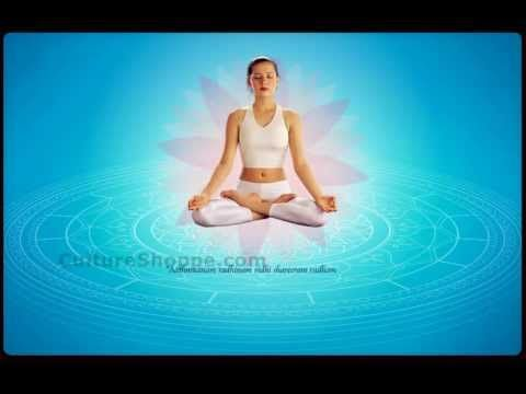 Yoga, generally understood as certain forms of physical exercises that help you stay in the domain of physical and mental health, reveals this truth to us with startling clarity.     This interactive DVD-ROM is a product of cultureshoppe.com