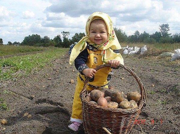 Садик-огородик:): О себе и об огороде