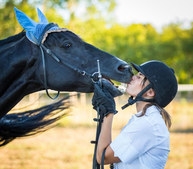 19 Words That Mean Something Different to Equestrians; I died at 'extremely helpful seatbelt'
