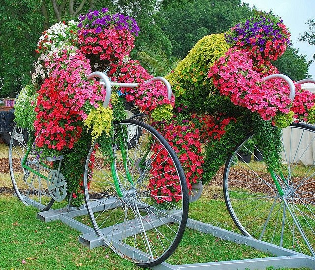 Smile :): Flowers Gardens, Bicycles, Flowers Display, Second Chances, Old Bike, Gardens Art, Planters, People, Flowersgarden