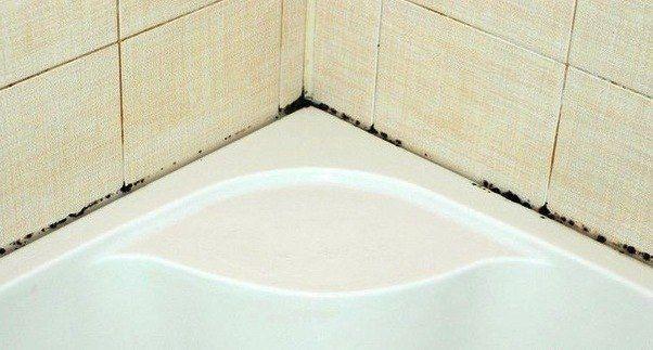 Как избавиться от плесени и грязных швов между плиткой