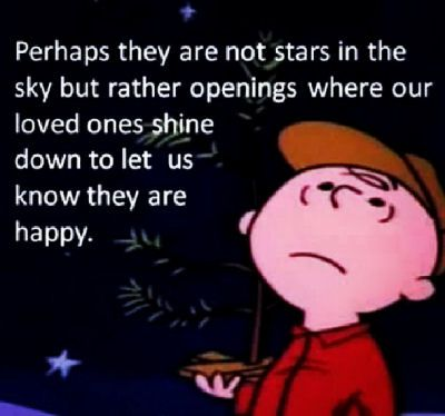 Perhaps they are not stars in the sky but rather openings where our loved ones shine down to let us know they are happy.
