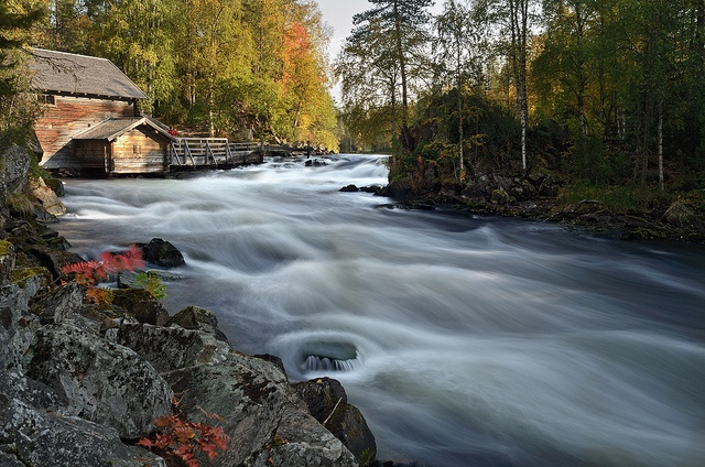 Northern Finland. Hiking in National Parks.  'Head to the Karhunkierros near Kuusamo for a striking terrain of hills and sharp ravines, never prettier than in autumn.' http://www.lonelyplanet.com/finland/lakeland-and-the-east/ruka