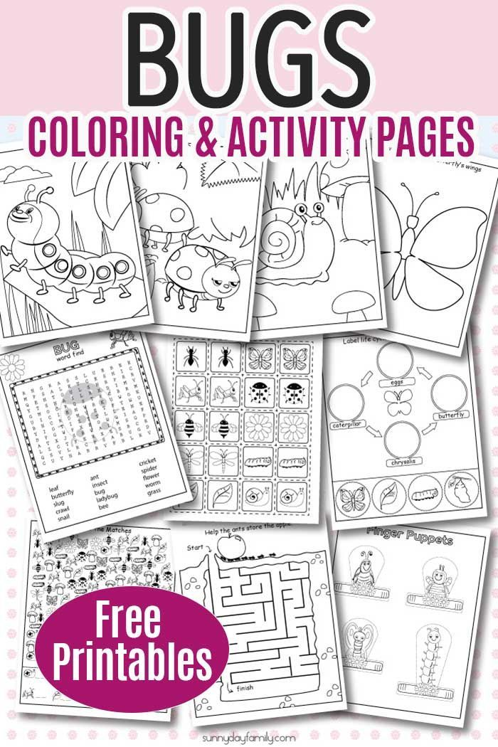 10 Free Printable Insect Activity Pages For Kids Insect Activities,  Preschool Insects Activities, Insects Preschool