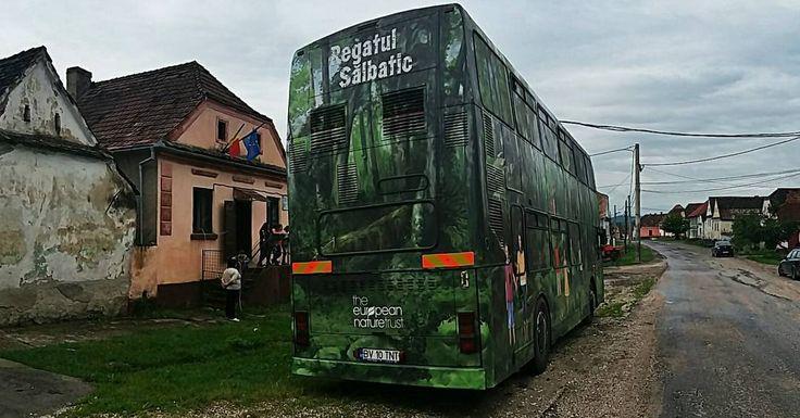 Azi suntem la Școala Generală din Ungra Brașov.  #TENTRomania  #RegatulSalbatic