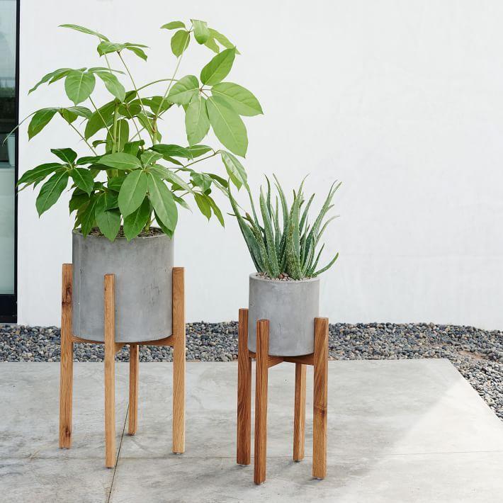 Modern Wood Leg Standing Planter - Cylinder