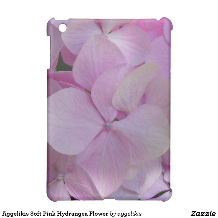 Aggelikis Soft Pink Hydrangea Flower