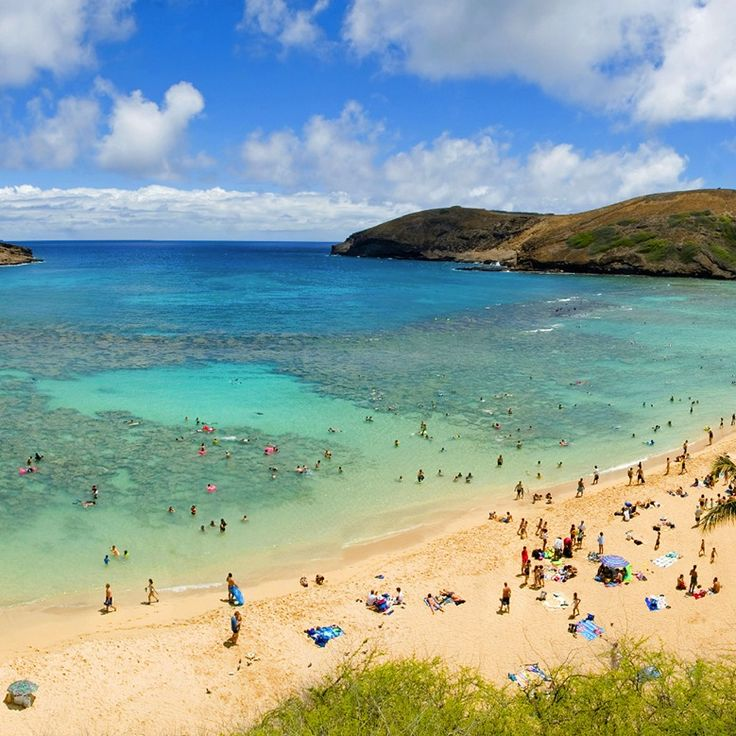 dream vacation to hawaii essay