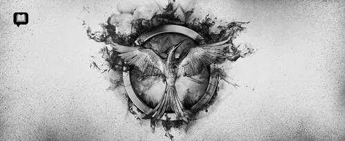 Mockingjay,black,wihte,the hunger games