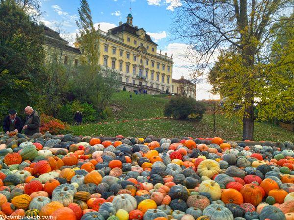 The World's Largest Pumpkin Festival - Jdomb's Travels
