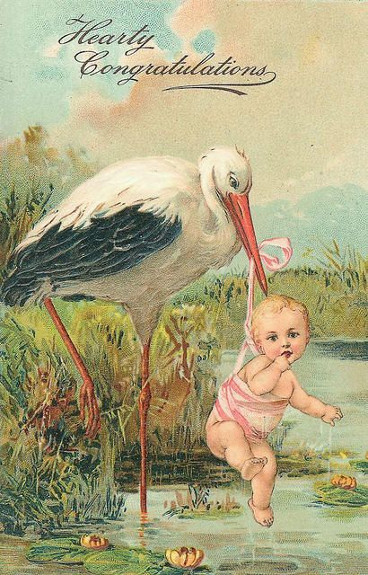 It's a girl ~ vintage postcard with stork