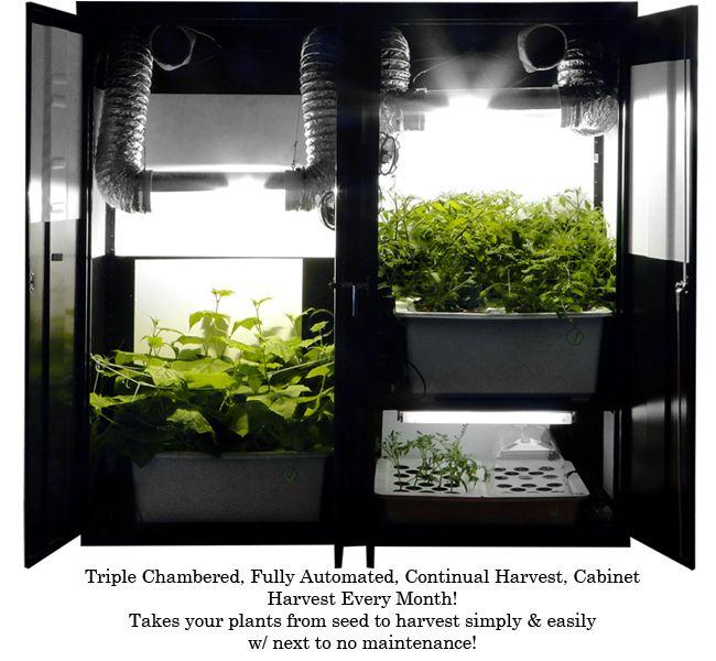 armoire de culture cannabis cool fabriquer une box de. Black Bedroom Furniture Sets. Home Design Ideas