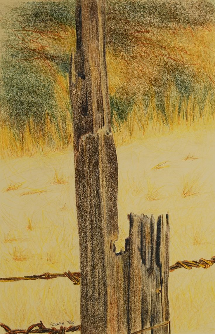 Fence Post ,#1,color pencil on paper