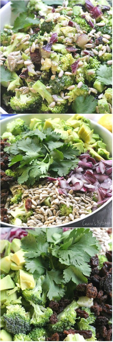 Healthy Creamy Broccoli Salad. Perfect for Summer BBQ's. Tangy, slightly sweet and delicious! #vegan