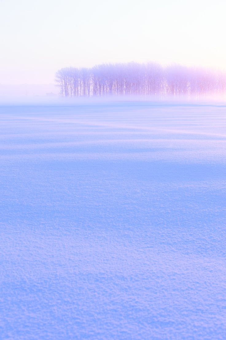 Hokkaido, Japan. This picture really speaks to me and I'm not sure why....it gives me chills.