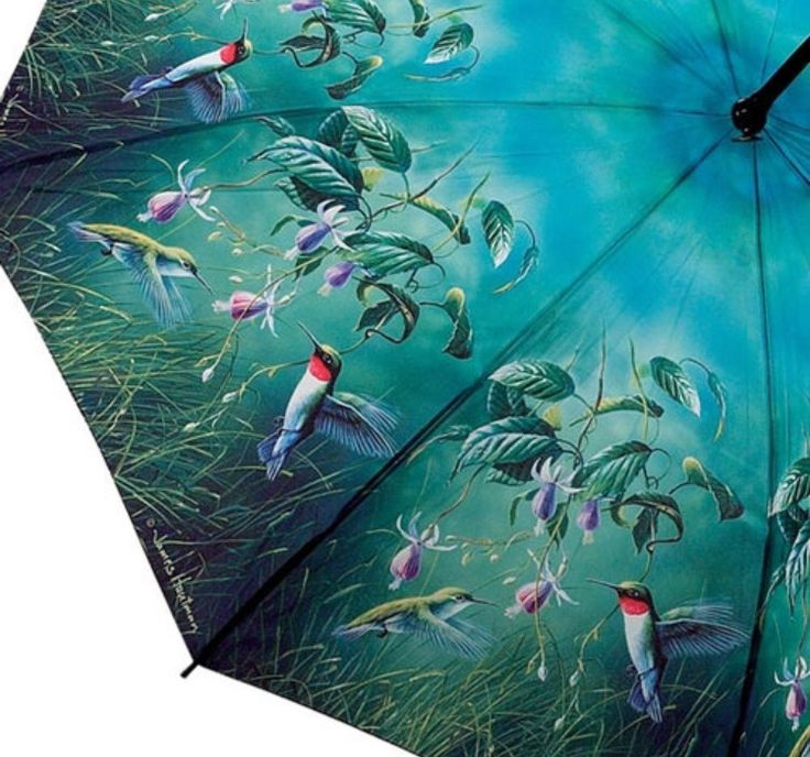 Close up of Hautmans Hummimg Bird umbrella canopy.