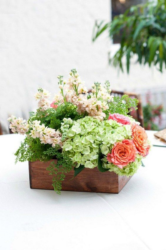 Best green hydrangea ideas on pinterest