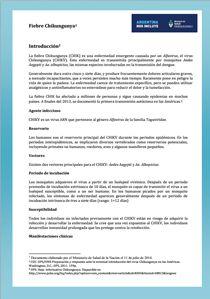 fiebre-chikungunya-argentina-11-07-2014