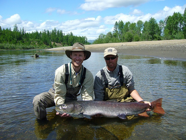 17 best images about taimen on pinterest wolves the fly for Taimen fishing mongolia