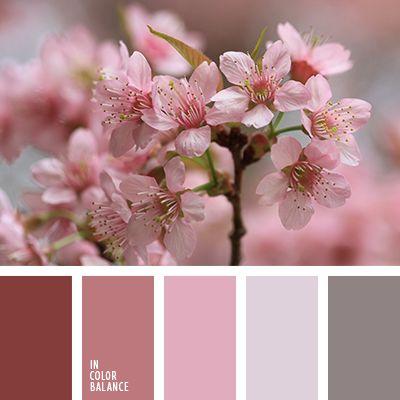 blanco sucio, color caqui, color rosa, colores suaves, combinación de colores para dormitorio, marrón ladrillo, melocotón suave, rosado pastel, rosado y blanco, rosado y gris, selección de colores, tonos rosados.