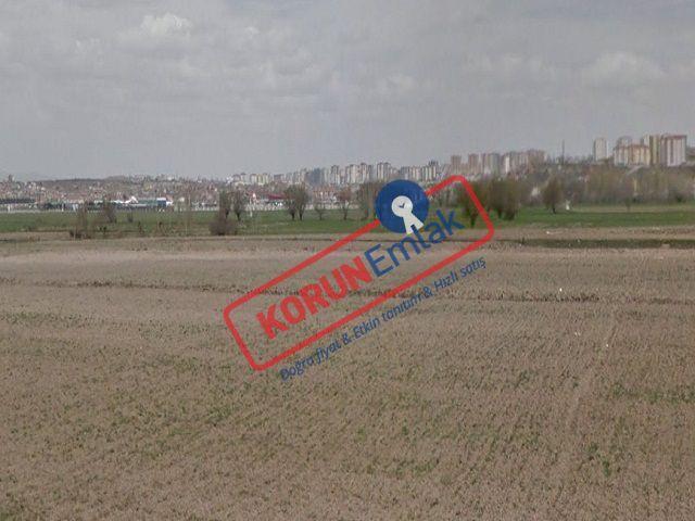 Kayseri Cırgalan Satılık Hisseli Yeşil Alan 4.125 m² nin 200 m² si