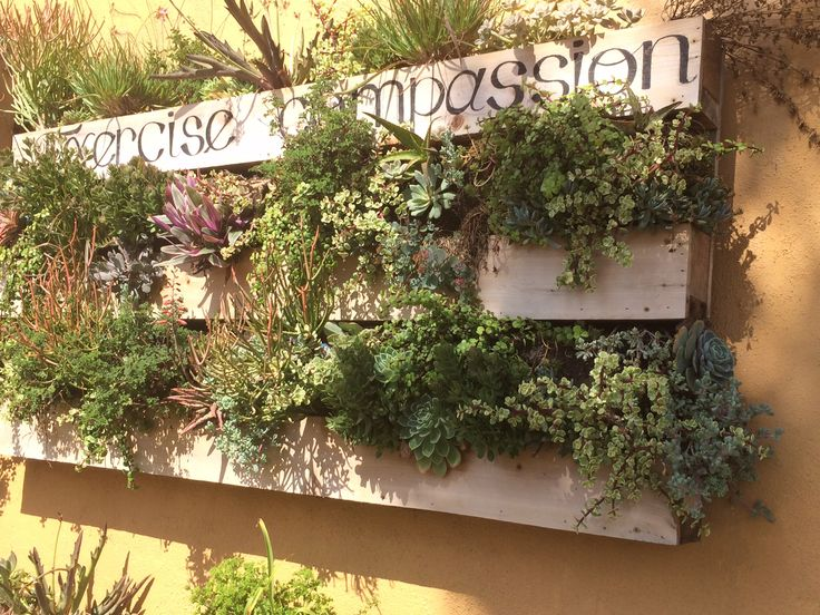 19 best raklap pozsg sokkal pallet succulent garden for Pallet succulent garden