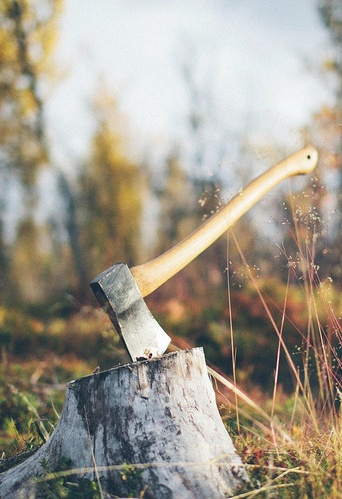 Axe for harvesting firewood (work and for us)