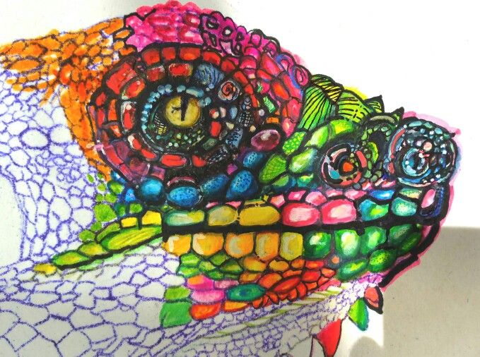 Feltpen drawing iguana by #finngaardproductions ♡☆♡☆♡