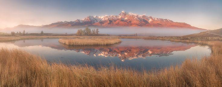 Altai, Курайская степь