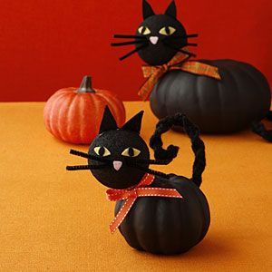 Cat pumpkins!  You can buy the fake pumpkins at Michael's or Hobby Lobby